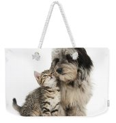 Kitten And Daxie-doodle Puppy Weekender Tote Bag