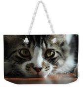Kitten Weekender Tote Bag