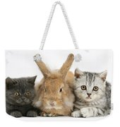 Kittens And Rabbit Weekender Tote Bag