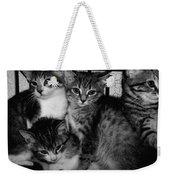 Kittens Corner Weekender Tote Bag