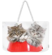 Kittens In A Food Bowl Weekender Tote Bag