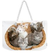 Kittens In Basket Weekender Tote Bag