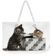 Kittens Playing With Box Weekender Tote Bag