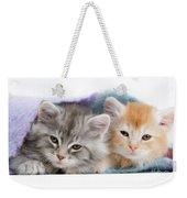 Kittens Under Blanket Weekender Tote Bag