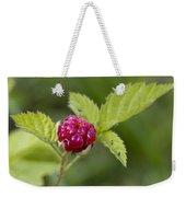 Knox Berry Farms Boysenberry Fruit Weekender Tote Bag