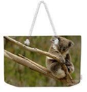 Koala At Work Weekender Tote Bag