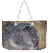 Koala Sleeping Weekender Tote Bag by Betty LaRue