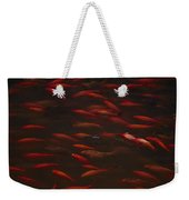 Koi Fish In China Weekender Tote Bag