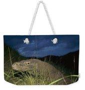 Komodo Dragon Varanus Komodoensis Weekender Tote Bag