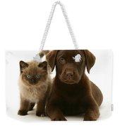Labrador Pup And Birman-cross Kitten Weekender Tote Bag