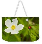 Ladybird Beetle Weekender Tote Bag