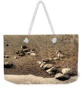 Lake 07 Weekender Tote Bag