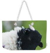 Lamb Weekender Tote Bag