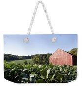 Landscape Soybean Field In Morning Sun Weekender Tote Bag