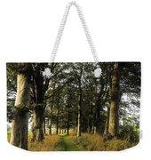 Larchill Arcadian Garden, County Weekender Tote Bag