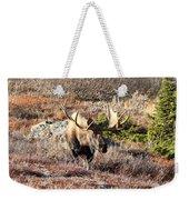 Large Bull Moose Weekender Tote Bag