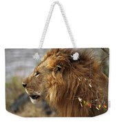 Large Male Lion Emerging From The Bush Weekender Tote Bag