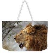 Large Male Lion Profile Portrait Weekender Tote Bag