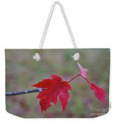 Last Leaves Weekender Tote Bag