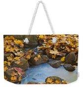 Last Signs Of Autumn 0438 Weekender Tote Bag