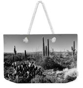 Late Winter Desert Weekender Tote Bag by Chad Dutson