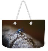 Laughing Cincindellidae Weekender Tote Bag