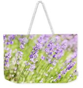 Lavender Blooming In A Garden Weekender Tote Bag
