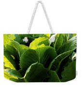 Layers Of Romaine Weekender Tote Bag