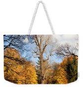 Lazienki Park Autumn Scenery Weekender Tote Bag