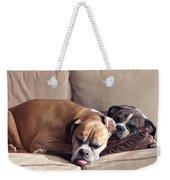 Lazy Boxers Weekender Tote Bag by Stephanie McDowell