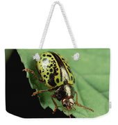 Leaf Beetle Calligrapha Sp Portrait Weekender Tote Bag