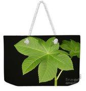 Leaf Of Castor Bean Plant Weekender Tote Bag