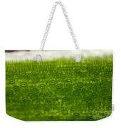 Leaf Stomata, Lm Weekender Tote Bag