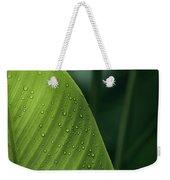 Leaf With Water Drops, Barro Colorado Weekender Tote Bag