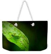 Leafhopper 2 Weekender Tote Bag