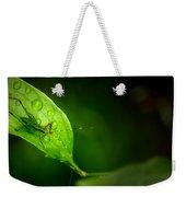 Leafhopper 3 Weekender Tote Bag