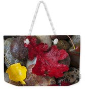 Leafs And Stones Weekender Tote Bag