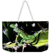 Leapin Lizards Weekender Tote Bag by Karen Wiles