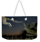 Leaping Ring-tailed Lemur  Weekender Tote Bag