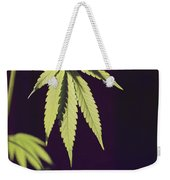 Leaves Of A Marijuana Plant Cannabis Weekender Tote Bag