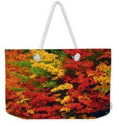 Leaves On Trees Changing Colour Weekender Tote Bag