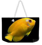 Lemonpeel Angelfish Weekender Tote Bag
