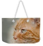 Leo The Kitty Beast Weekender Tote Bag