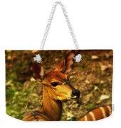 Lesser Kudu Weekender Tote Bag