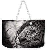 Let Sleeping Tiger Lie Weekender Tote Bag