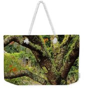 Lichen Covered Apple Tree, Walled Weekender Tote Bag
