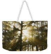 Light Beams Shining Through Trees And Fog Weekender Tote Bag