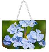 Light Blue Plumbago Flowers Weekender Tote Bag by Carol Groenen