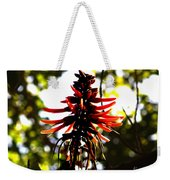 Light Play IIi Weekender Tote Bag