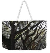 Light Through Live Oaks Weekender Tote Bag